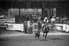 Action photos of Blake roping his steer at the National Finals of Team Roping Championships. 4/11