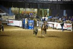 Action photos of Blake roping his steer at the National Finals of Team Roping Championships. 6/11