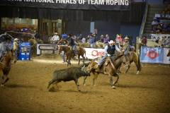 Action photos of Blake roping his steer at the National Finals of Team Roping Championships. 7/11